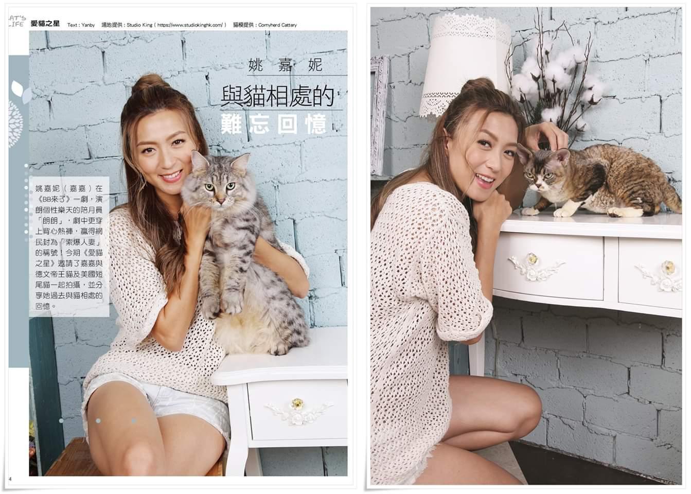 Cat's Life 姚嘉妮