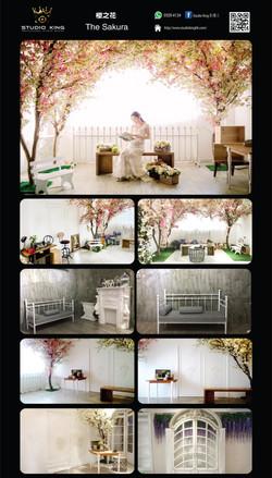 302.The Sakura 櫻之花