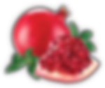 pomegranate_clipped_rev_1.png