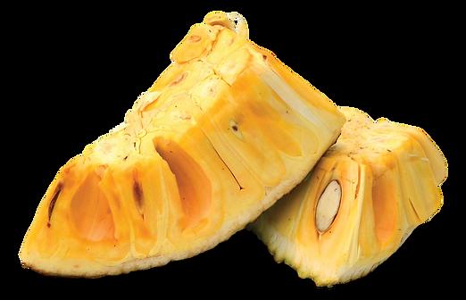 jackfruit cut_clipped_rev_1.png