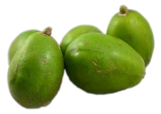 Ambarella-fruit-1_clipped_rev_1.png