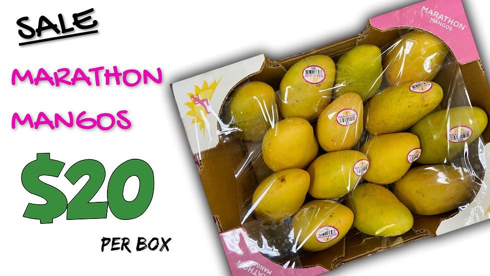 marathon mango ad.png