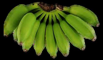 thai banana_clipped_rev_1.png