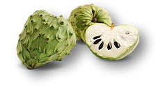 Cherimoya_clipped_rev_1.png