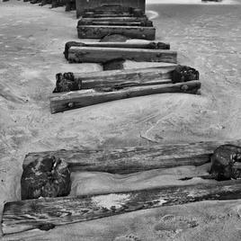 "Beach Wood Michel Craft Photography on Canvas 11"" x 14"" $150"