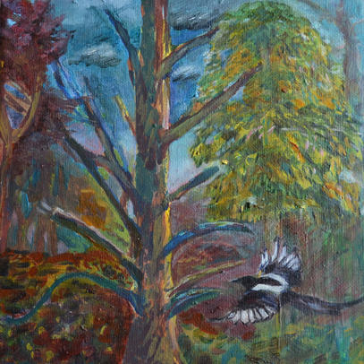 Magpie in Trees