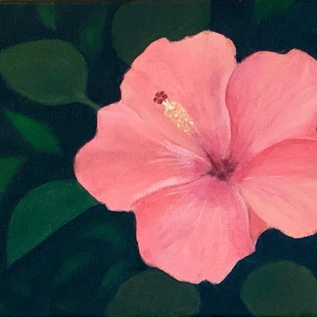 """Hibiscus by Maribeth Durivage Oil on Canvas 8"""" x 10"""" (unframed)"""
