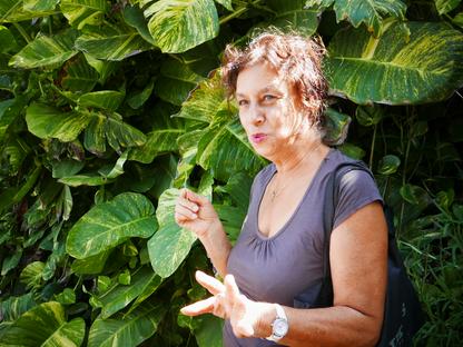 Découvrez ce documentaire sur l'art du jardin créole