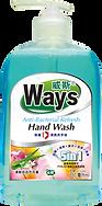 威斯5合1除菌清爽洗手液