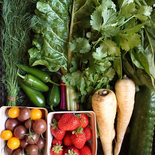 Weekly Produce Box