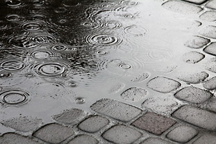 Rain in the city.jpg