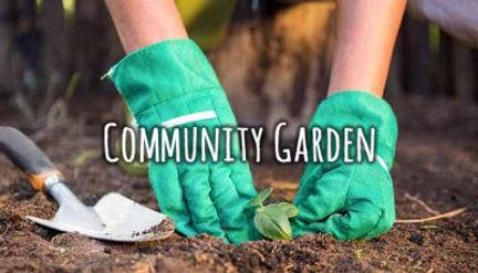 group-community-garden-e1518331394664.jp