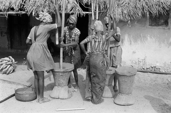 Liberians eat rice almost every meal, hot or cold, day or night, laced with enough pepper in the sauce to blow the top off of a volcano. Here are four Kpaytuo girls beating rice stalks in mortars fashioned from a tree trunk.