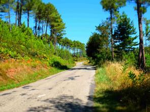 2e stage été  - Claire Filmon & Stéphane Els - 4 août au 10 août 2019 - Payzac (Ardèche)
