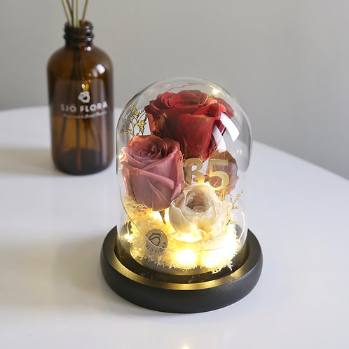 35th Coral Anniversary LED Bell Jar