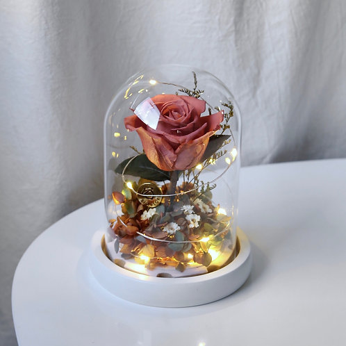 Muted Red Rose LED Bell Jar