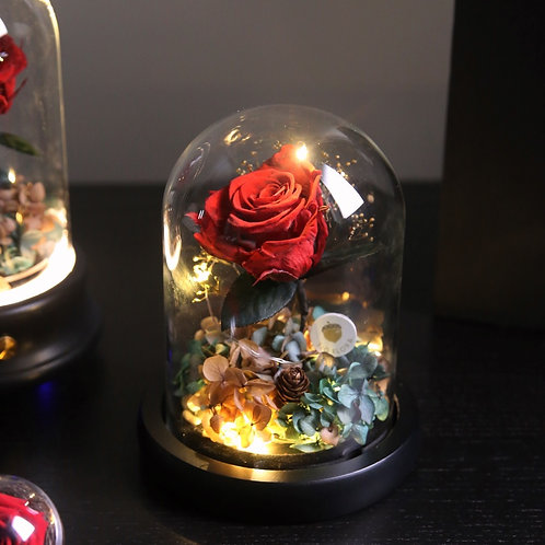 Beauty & the Beast LED Bell Jar