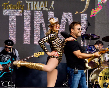 Neil Totally TINA Musician - guitar