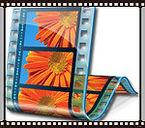 T11 - La vidéo numérique