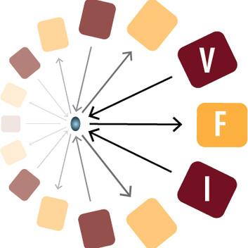 VFI.jpg