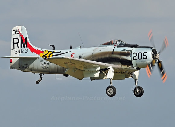 AD-1 Skyraider Short Kit by Ziroli