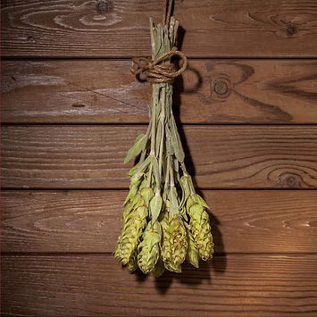 Mountain-tea-hanging-on-a-rope.jpg