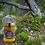Thumbnail: Set of 3 Organic Detox Tea & Raw Honey
