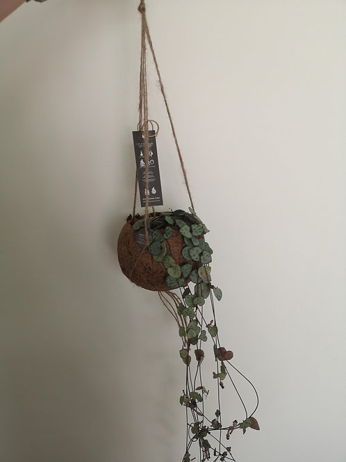String of Hearts Hanging
