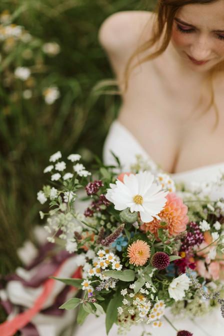 The Petal Studio Wild Flowers