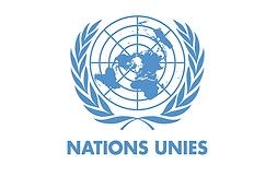 ONU-Suisse-Bourses-professionnels-Maroc-