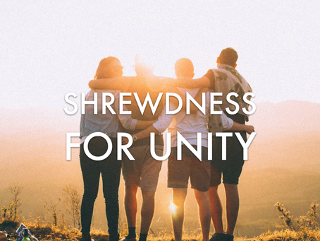 Shrewd Strategies to Unity, Part 2