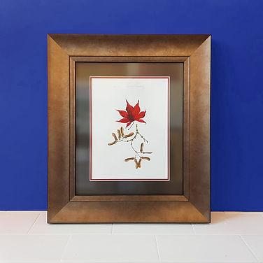 cardiff-art-framing