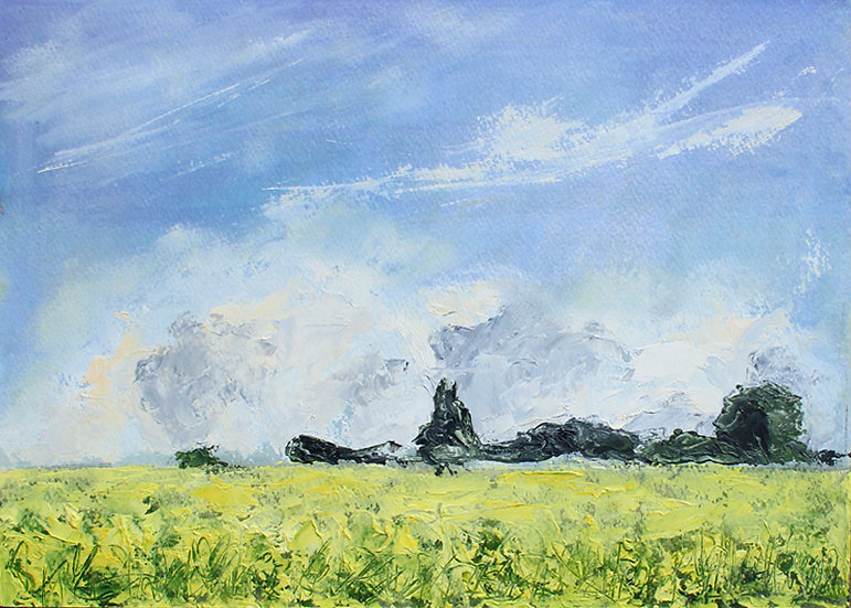 Field Of Yellow - Provence