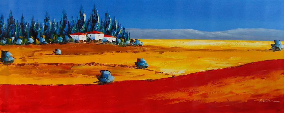 Fields Of Colour (XL)