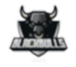 UFRPE_BlackBulls.png