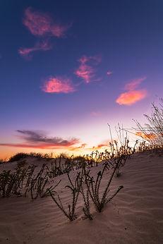 Ashdod Dune S.jpg