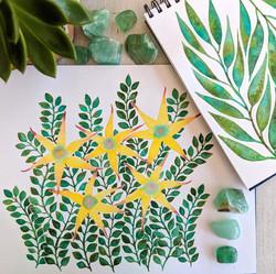 yellowstarfishflowers