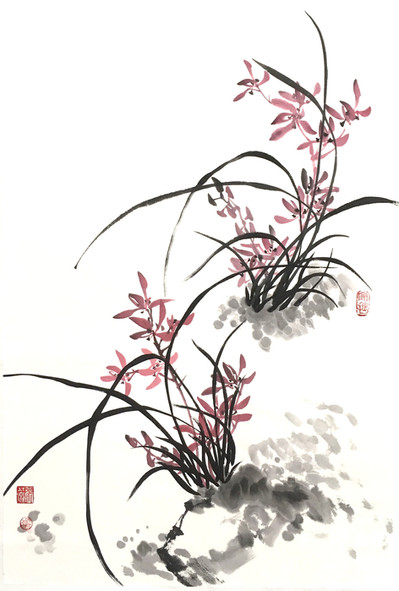 Orchid on the Rock.jpg