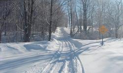 feb 14 snowmobile 007.jpg
