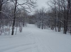 feb 14 snowmobile 057.jpg