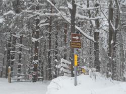 2012-12-28+trail+sign1.jpg