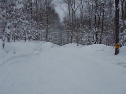 feb 14 snowmobile 019.jpg