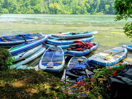 Which Paddle Board is Right for You? We Share Our 3 Favorites!