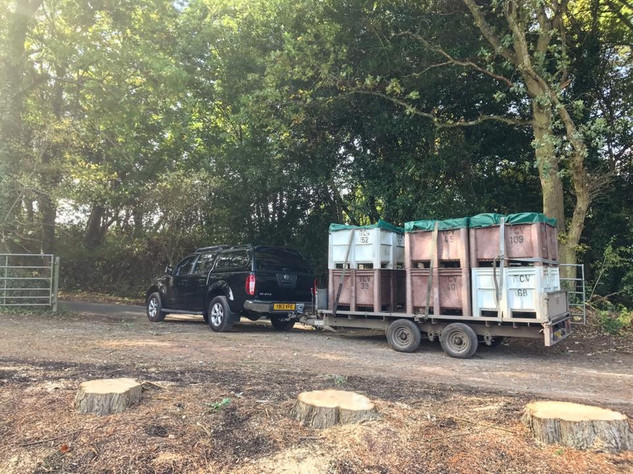 Sending our first grapes to Three Choirs