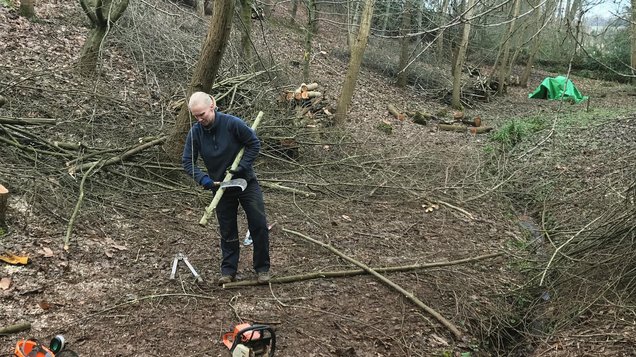 Preparing brash/poles/logs