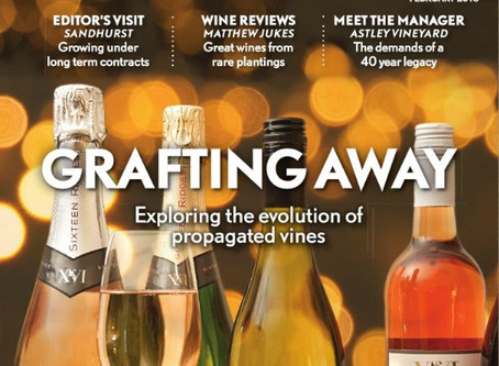 Vineyard Magazine feature