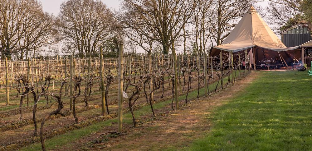 Astley Vineyard wine pairing dinner