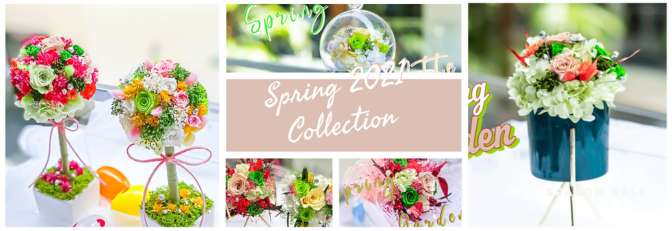 Spring 2021 Collection - Web (6).png