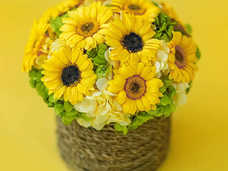 DIY Arrangement with Mini Gerberas and Andes Ajisai Hydrangeas