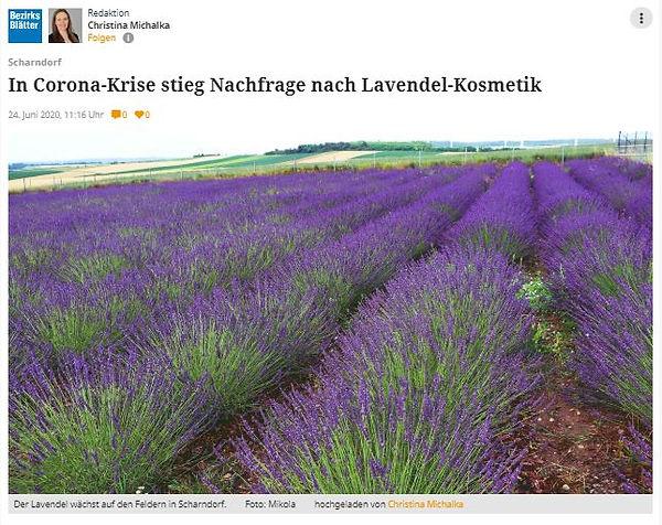 Bezirksblatt 24.06.2020 Michalka.JPG